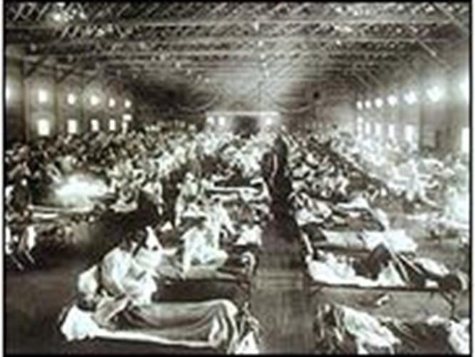 1918 salgınının sebebi kuş gribi mi?